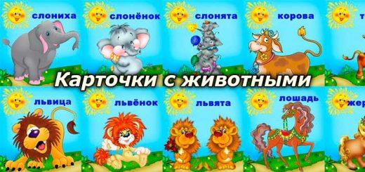 kartochki-s-zhivotnymi